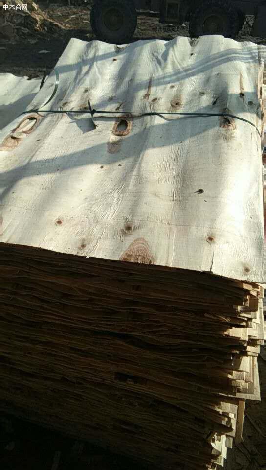 新鲜出炉杨木三拼小洞板、中洞板、大洞板大量销售