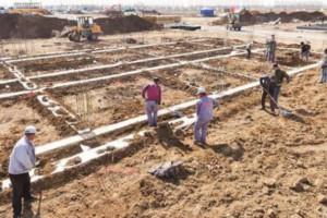总投资12亿元 平和鑫源祥木业项目开工建设