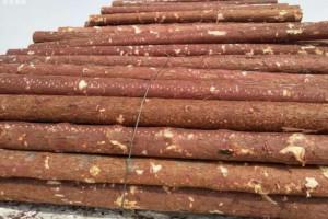 木材涨价声中的北方木材市场:方木价格下调