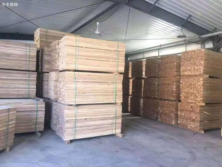 俄罗斯桦木板材最新报价