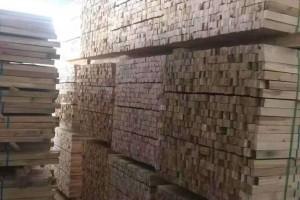 俄罗斯桦木方料厂家批发价格