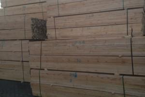 池州樟子松木材价钱