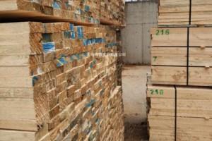 2018年全球针叶木材贸易1-9月下降2.5%