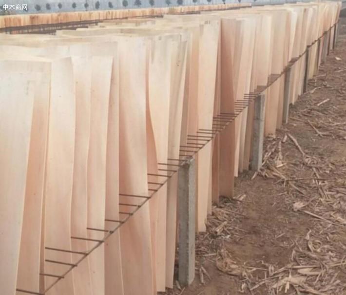 杨木人造板受潮,易变形、收缩严重是杨木人造板家具的缺点
