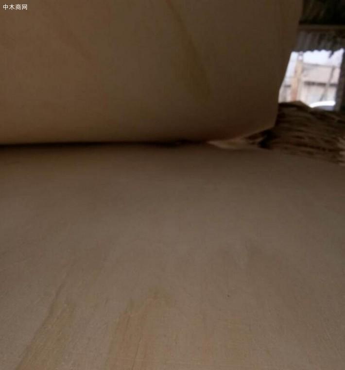 江苏徐州青松木业位于江苏省徐州市,是专业生产:杨木三拼板皮、杨木皮子、杨木单板、杨木夹芯板品牌企业