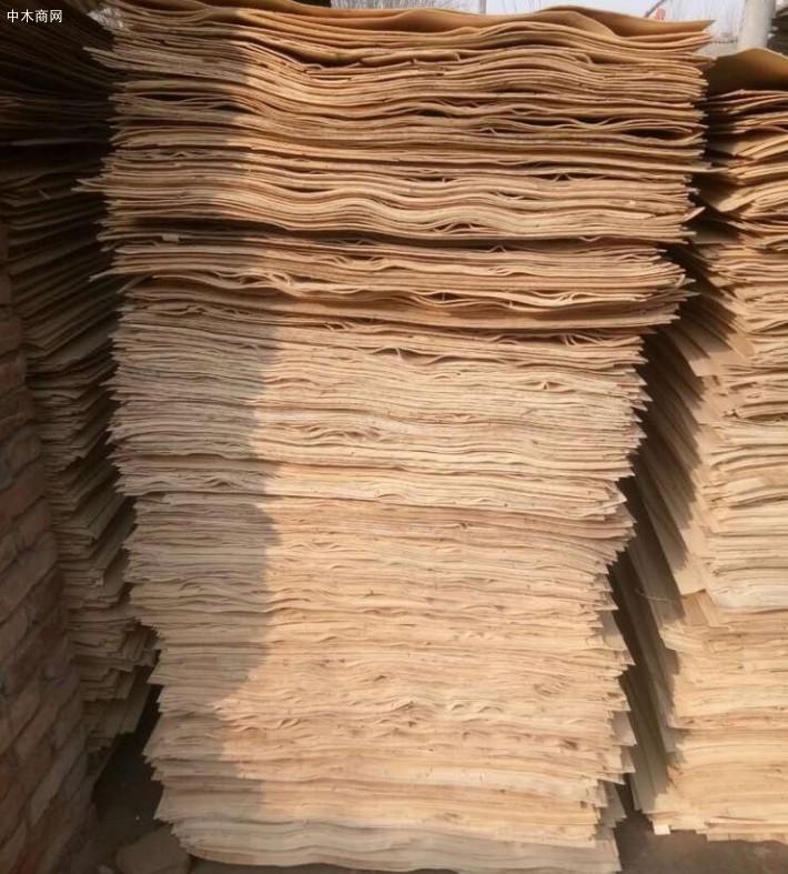新鲜出炉杨木面板单板大量销售