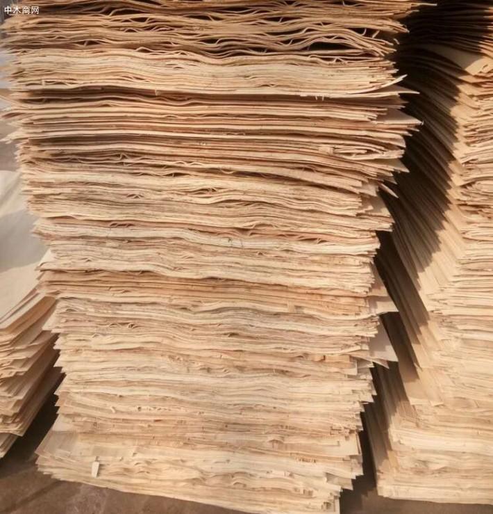 新鲜出炉丰县杨木三拼单板皮大量销售