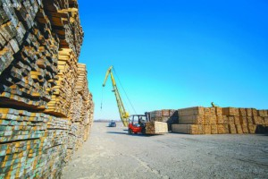 俄罗斯将吸引中国投资发展木材加工业