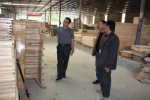 巴州区林业局开展冬季木材加工企业专项整治