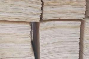 1-11月沭阳桑墟镇木材加工企业销售收入48.32亿元!