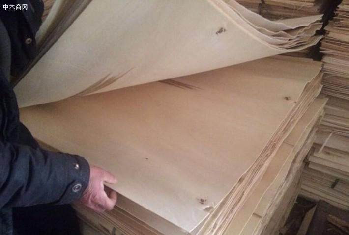 现在很多商家已经看到了杨木木皮潜能
