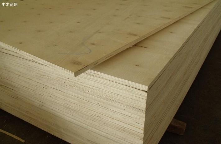 杨木单板是使用量最大,价格最低的单板