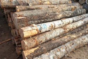 过失引发火灾 拉萨消防行政拘留一木材厂负责人