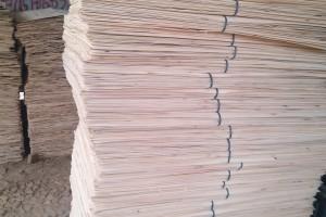 杨木三拼板皮生产视频
