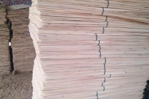 杨木三拼单板木皮报价