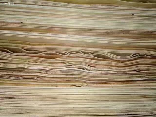 杨木单板用途-包装材加工