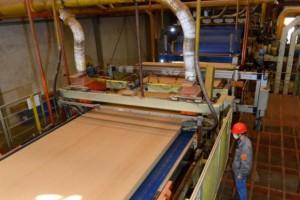 2018年黔东南州林产工业完成产值14.5亿元