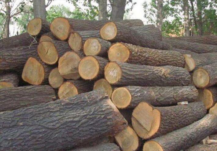 一般在东阳木雕中有很多种材料