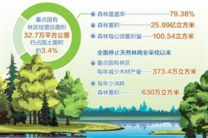 我国重点国有林区改革取得阶段性进展