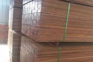 预计2019年全球软木需求将达到3.5亿立方米