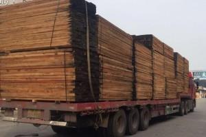 未来缅甸的木材砍伐量,将以成材的树木量为依据来核算