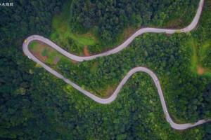 黔东南将建设全州首个数字林业系统平台