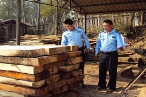 云南瑞丽开展木材加工企业消防安全整治工作