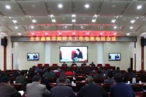 绵阳市召开2019年森林防火工作电视电话会议