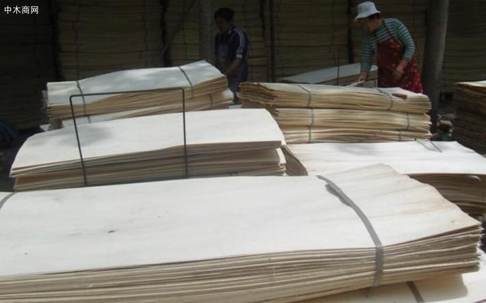 新鲜出炉杨木夹芯板,杨木三拼板皮大量销售