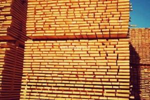 专注&专业俄罗斯桦木板材、规格料刨光材