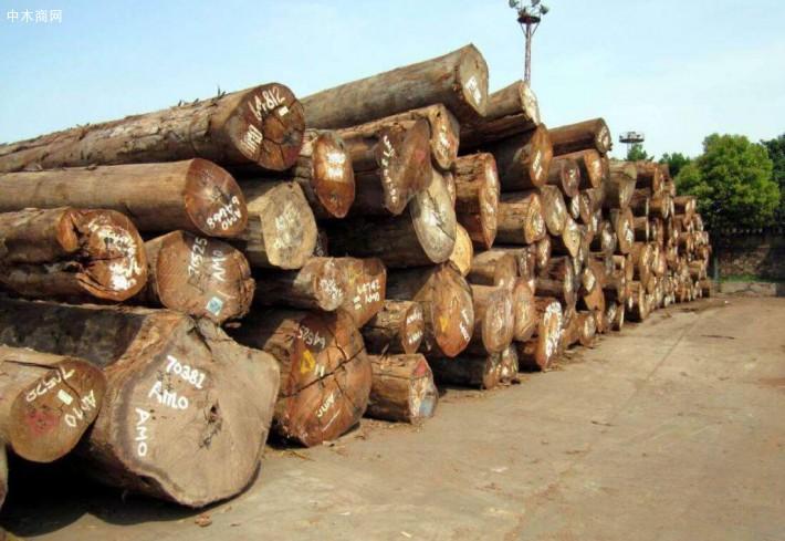 越南:有关部门要严格管控投资越南木材领域的外企