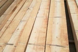 杨木烘干板材高清图片