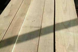 白杨木板材,自然宽,厚度2.5