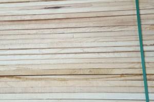 河南榆木板材加工厂视频