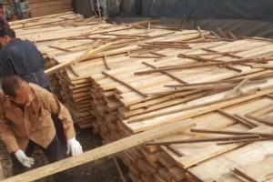 四川宜宾开展春节前木材经营加工场所安全检查