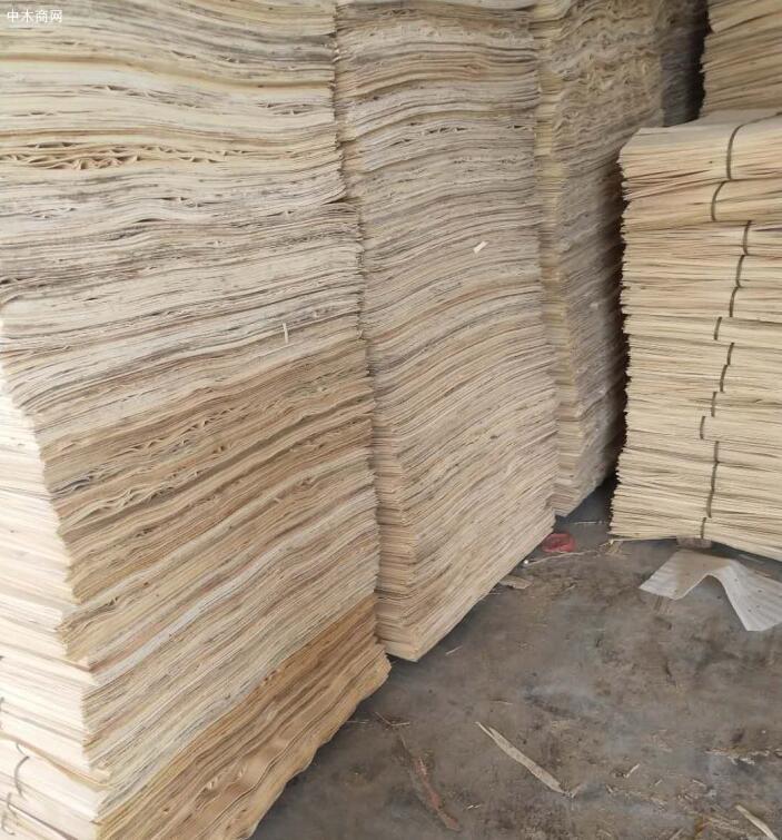 新鲜出炉杨木三拼单板皮,杨木夹芯板大量销售