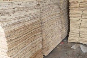新鲜出炉杨木三拼单板皮厂家直销