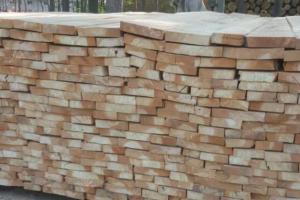 中外木业客商到河南临颍县投资考察