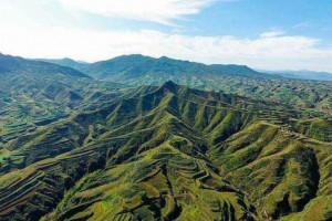 黄土高原地区成为全国连片增绿幅度最大地区