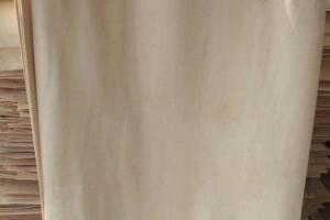 杨木单板_徐州轩畅木业