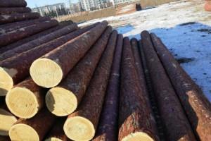 销售进口俄罗斯落叶松原木,欲购从速