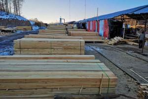 俄罗斯落叶松板材建筑木方视频
