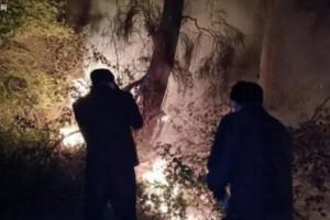 福清木材厂起火 城管协助消防官兵火速处置