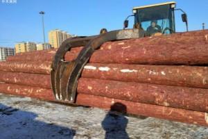 俄远东铁路局新增木材出口对华货运快车