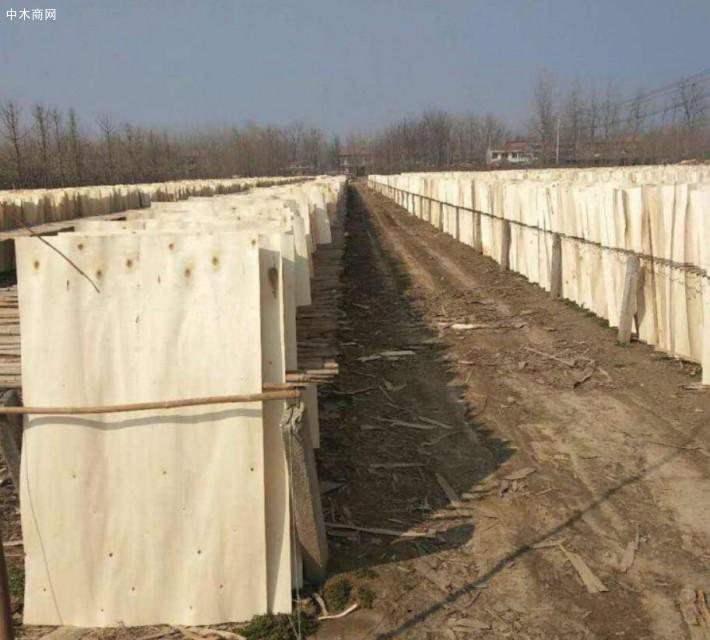 江苏徐州诚信木业是一家专业生产杨木三拼木皮的品牌企业