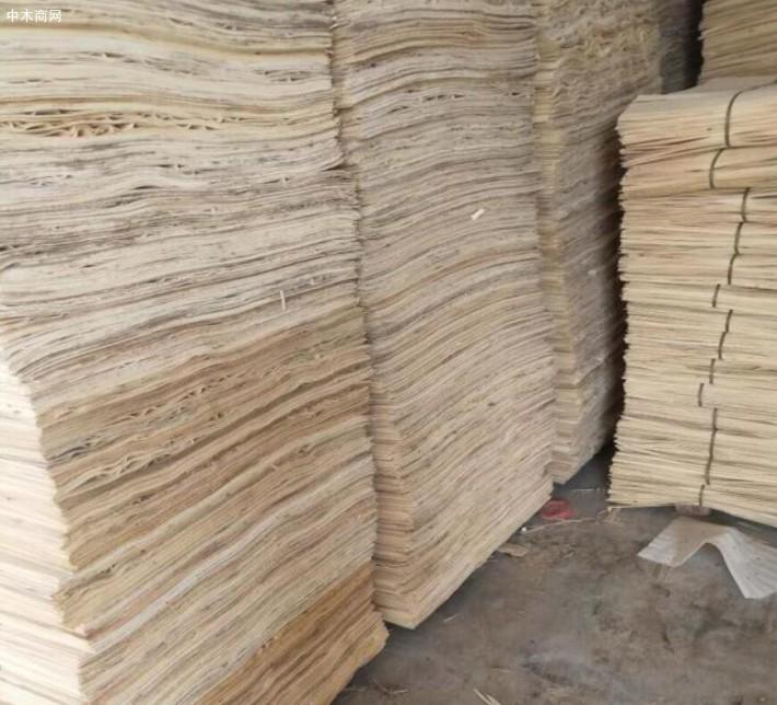 新鲜出炉杨木夹芯板,杨木三拼木皮大量销售