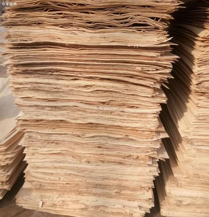 新鲜出炉徐州杨木皮,杨木三拼纯白大量销售