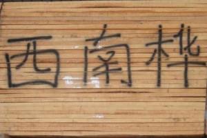 西南桦 家具材 木枋