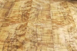 金丝楠树瘤木皮