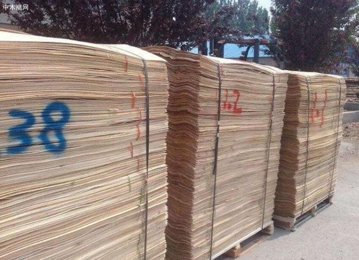 采购桦木单板